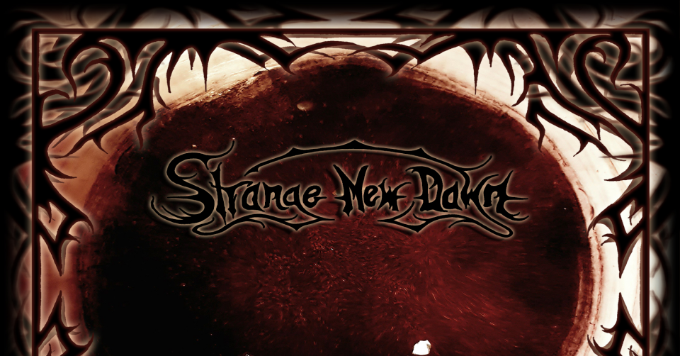 Recenze: STRANGE NEW DAWN – Planet System /2020/ Death To Music Production